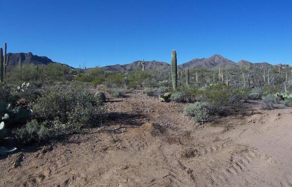 3785 N. Avenida Dos Vistas, Tucson, AZ 85745 Photo 6