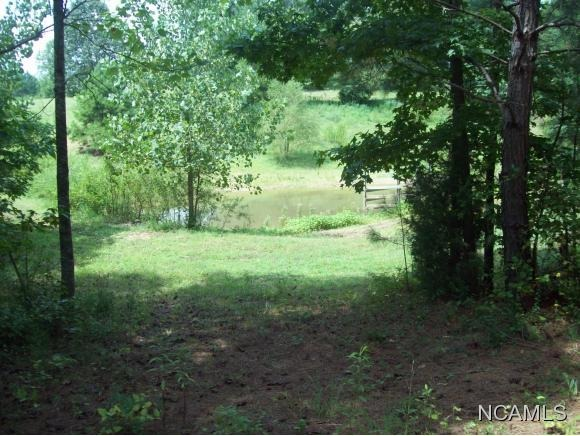 477 Co Rd. 1731, Holly Pond, AL 35083 Photo 22
