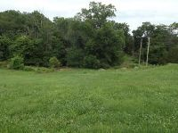 Home for sale: Lot 24 Peach Brook, Nixa, MO 65714