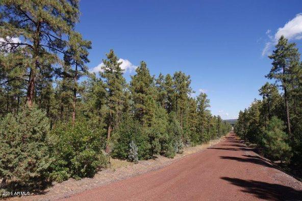 2850 W. Richardson Ln., Lakeside, AZ 85929 Photo 3