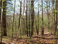 Home for sale: Lot #6 Far View Rd., Arlington, VT 05250