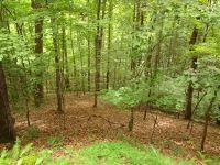 Home for sale: 00 Deerwood Dr., Franklin, NC 28734