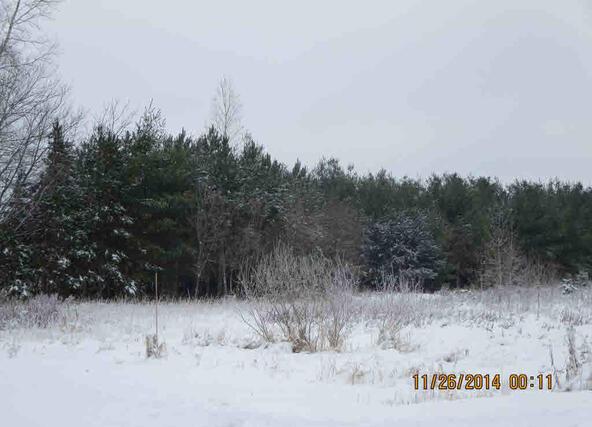 Sunshine Rd. Rd., Fremont, WI 54940 Photo 5