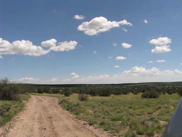 206e Bixler Trail, Ash Fork, AZ 86320 Photo 6