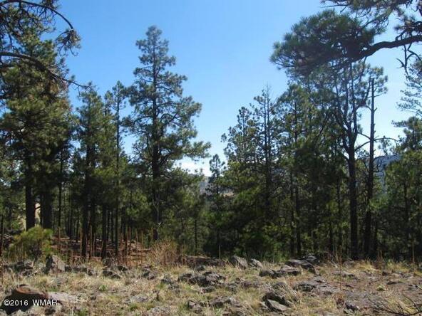 #65 County Rd. N1072, Greer, AZ 85927 Photo 4