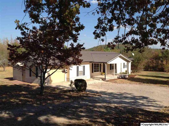 9234 Us Hwy. 278, Hokes Bluff, AL 35903 Photo 4