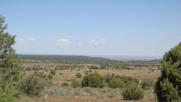 645 Westwood Ranch Lot 645, Seligman, AZ 86337 Photo 2