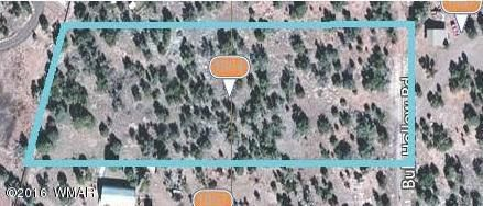 1864 Bull Hollow Rd., Show Low, AZ 85901 Photo 1