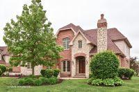 Home for sale: 22440 Cobblestone Trail, Frankfort, IL 60423