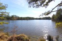 Home for sale: 315 Country Pond Rd., Ninety Six, SC 29666