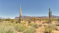 Home for sale: 6752 E. Arroyo Verdi Rd., Gold Canyon, AZ 85118