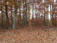 Home for sale: 999 John Delk Rd., Edneyville, NC 28792