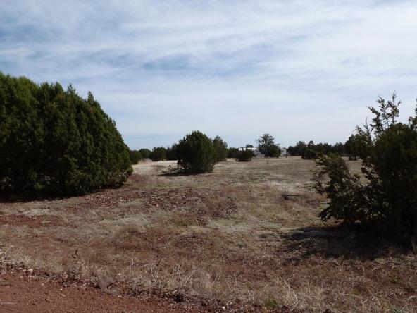 42100 N. Dead Tree Rd., Seligman, AZ 86337 Photo 22