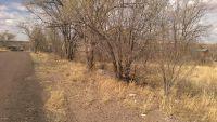 Home for sale: Lot 7 Hale Crest Subdivision St., Springerville, AZ 85938