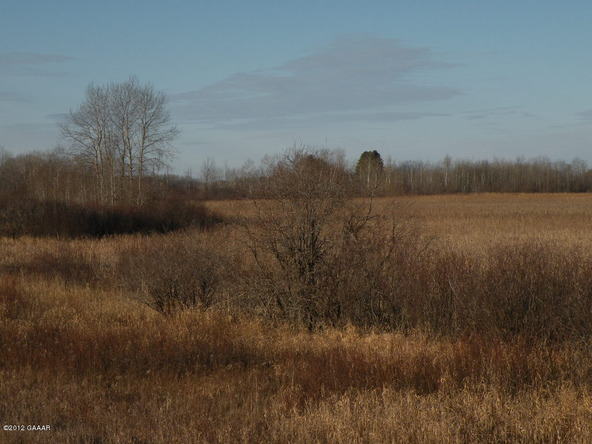 County Rd. 138, Parkers Prairie, MN 56361 Photo 23