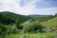 Home for sale: 422 Granada Hill, Edwards, CO 81632