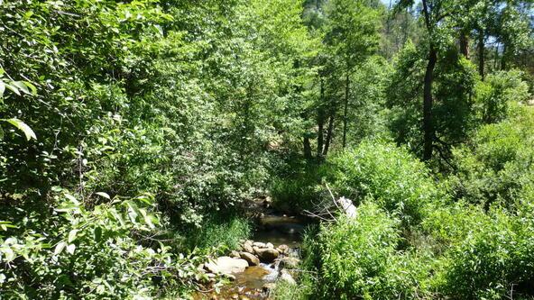 220 W. Zane Grey Cir., Christopher Creek, AZ 85541 Photo 30