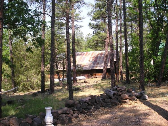 1083 W. Apache Ln., Lakeside, AZ 85929 Photo 28