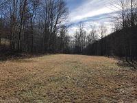 Home for sale: 000 Lickskillet Rd., Burnsville, NC 28714