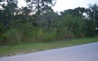 Home for sale: 1608 Meadowbrook St., Lake Placid, FL 33852