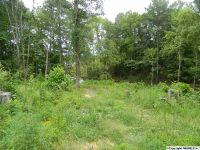 Home for sale: Cheyenne Dr., Southside, AL 35907