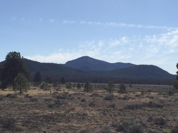 3602 E. Mountain Man Trail, Williams, AZ 86046 Photo 32