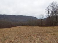 Home for sale: 0 Hayters Gap Rd., Saltville, VA 24340