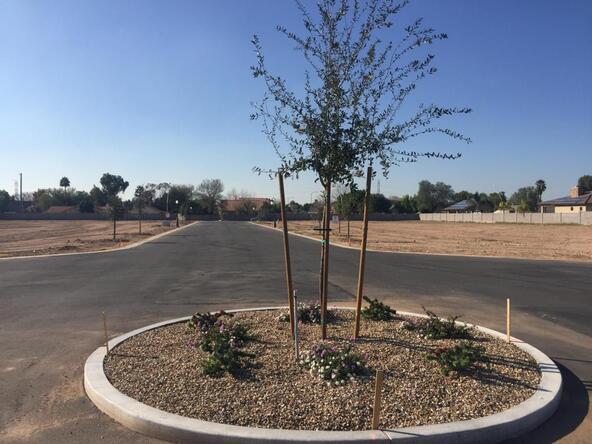 1618 E. Leland Cir., Mesa, AZ 85203 Photo 18