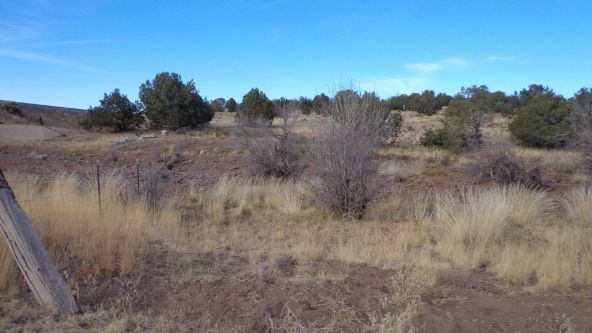 211 Juniperwood Rnch Un 3 Lot 211, Ash Fork, AZ 86320 Photo 3