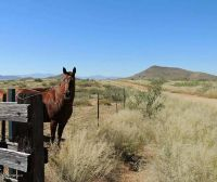 Home for sale: 170 Acre On Reata, Elfrida, AZ 85610