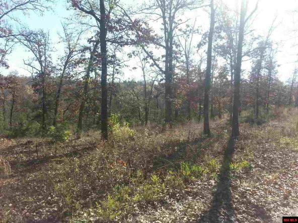 550 Mc 2031, Lead Hill, AR 72644 Photo 3