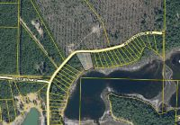 Home for sale: 0000 Woodymarion Dr., Chipley, FL 32428