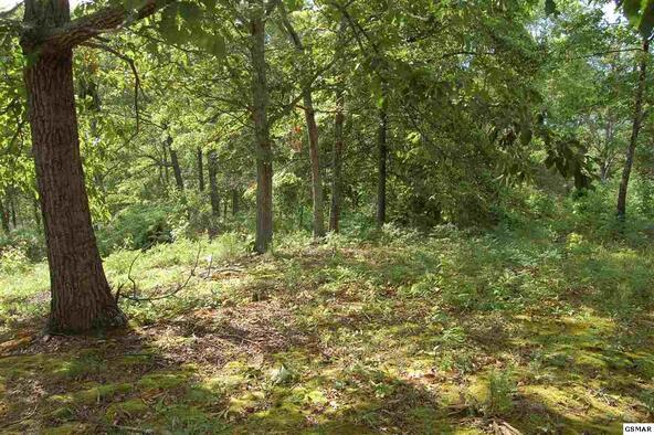 Lot 86 Hatcher Mtn Rd., Sevierville, TN 37862 Photo 17