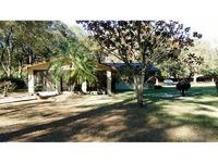 Home for sale: 4811 Pennyroyal Ln., Dover, FL 33527