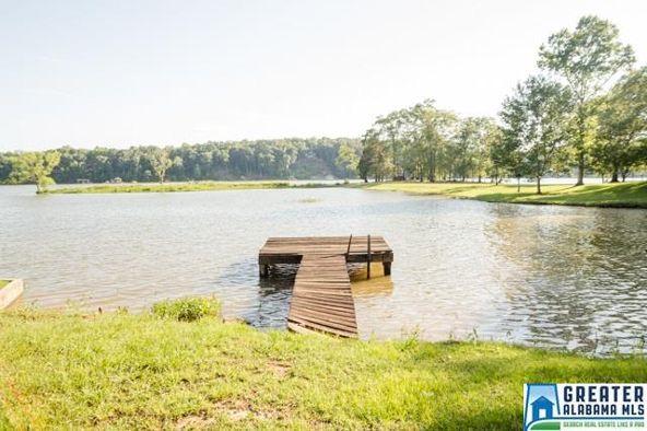 550 Blue River Dr., Lincoln, AL 35096 Photo 53