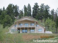Home for sale: 8505 Hwy. 165, Wetmore, CO 81253
