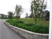 Home for sale: 4 Tom Walker Dr., Beechgrove, TN 37018