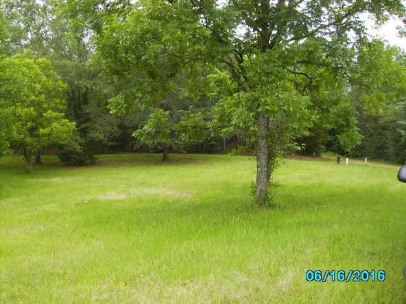 2426 County Rd. 432, Woodland, AL 36280 Photo 7