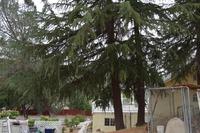 Home for sale: 17869 Elizabeth Lake Rd., Lake Hughes, CA 93532