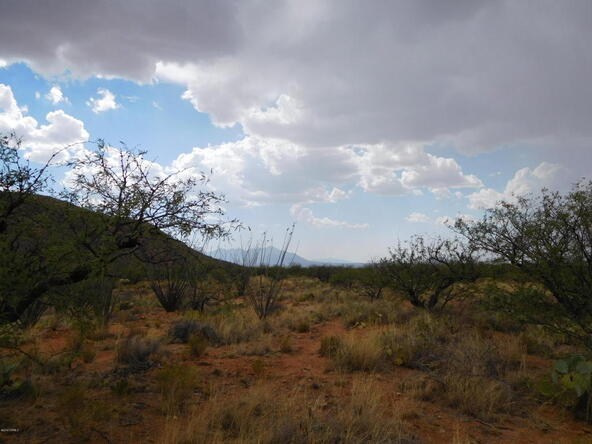16705 S. Sierrita Mountain, Tucson, AZ 85736 Photo 17