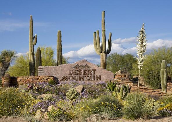 11073 E. Tamarisk Way, Scottsdale, AZ 85262 Photo 4
