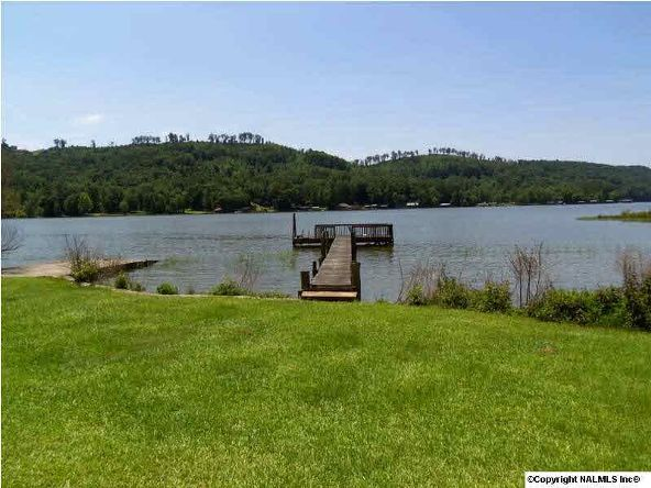 1120 County Rd. 165, Cedar Bluff, AL 35959 Photo 2