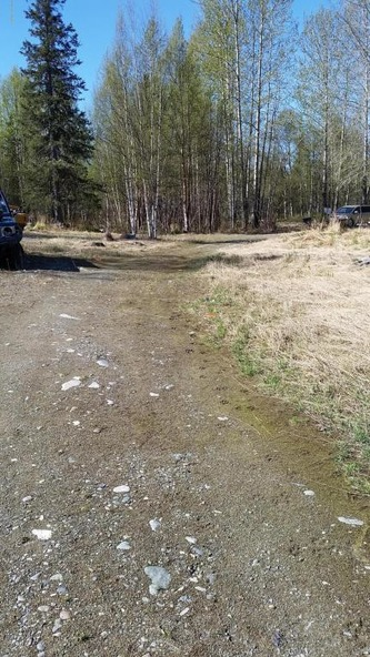 6321 N. Moose Meadows Rd., Wasilla, AK 99654 Photo 18