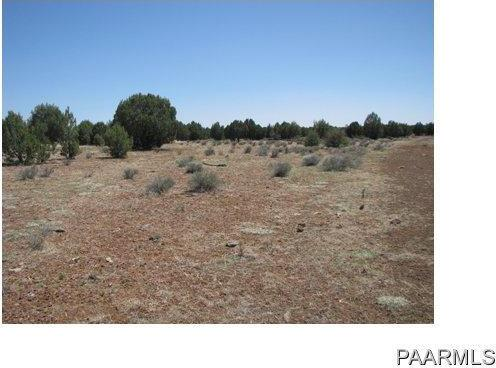 292 Sabrina, Ash Fork, AZ 86320 Photo 5