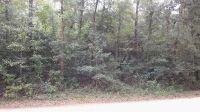 Home for sale: 0000 E. Buckhorn Trail, Greenville, FL 32331
