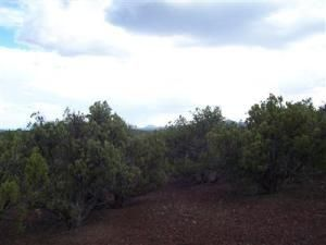 491 Westwood Ranch Lot 491, Seligman, AZ 86337 Photo 6