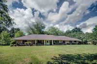 Home for sale: 205 Willow Oak Dr., Clinton, MS 39056