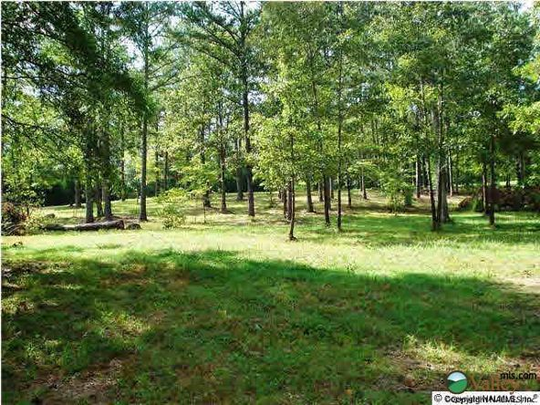 107 County Rd. 479, Cedar Bluff, AL 35959 Photo 3