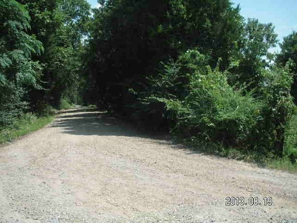 40 Acres M/L, Clarksville, AR 72830 Photo 2