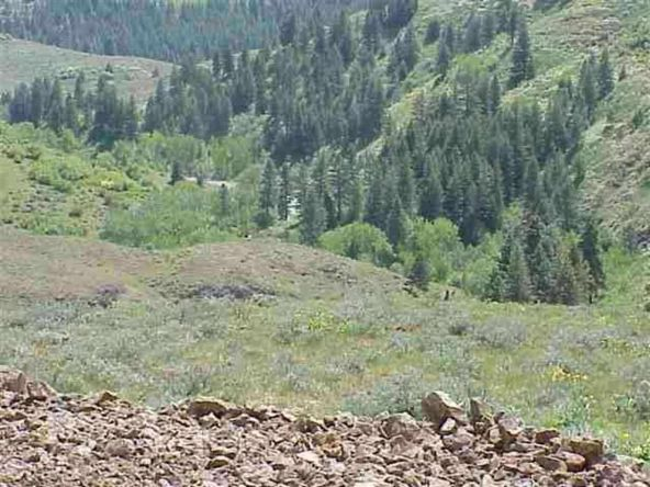 Lot 1 Middle Fork Rd., Council, ID 83612 Photo 1